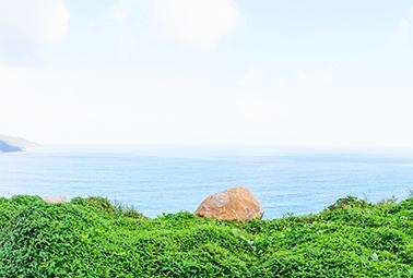 Đỉnh Đầu Lâu, Sơn Trà, Đà Nẵng 360°